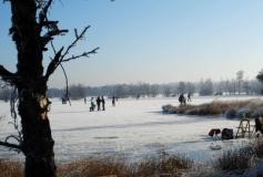 Schaatsen in de omgeving