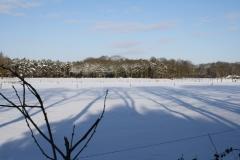 Winter uitzicht park